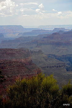 South Rim View by Carrie Putz