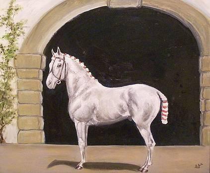 Spanish Horse by Birgit Schnapp