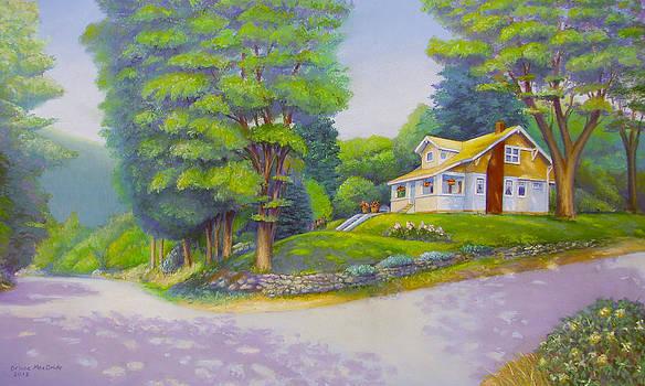 Spirit Lake House by Bruce MacBride