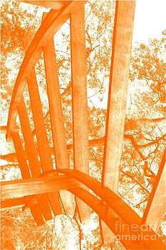 Spokes Orange by Patty  Thomas
