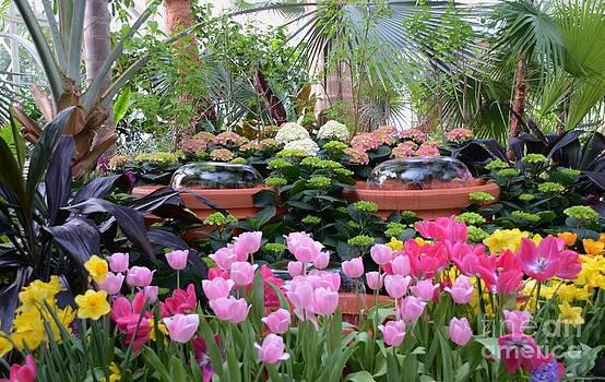 Spring Flower Show by Kathleen Struckle