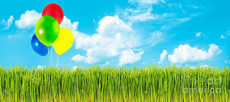 Jo Ann Snover - Spring grass and balloons