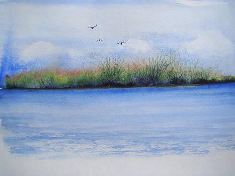 Spring Marsh by Chip Picott