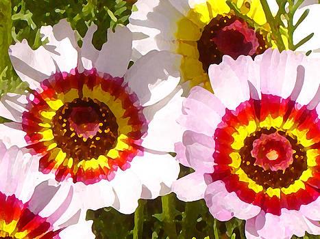 Amy Vangsgard - Spring Wildflowers