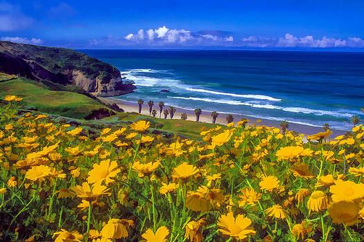 Cliff Wassmann - Springtime on the Headlands