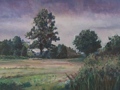 St. Marys County Landscape by David P Zippi