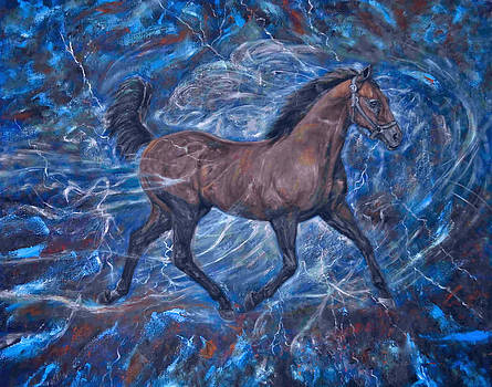 Stallion Storm by Terry Sita