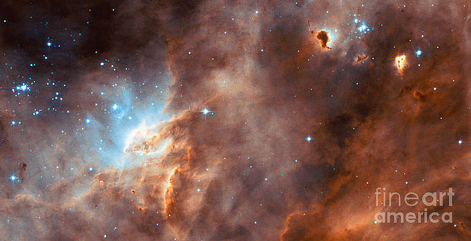 Science Source - Star Formation In The Lmc