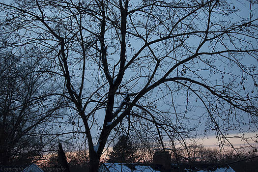Stillness by Stacie  Goodloe