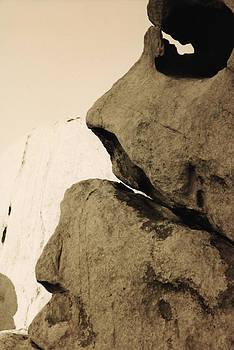 Stone Skull by Gordon Larson
