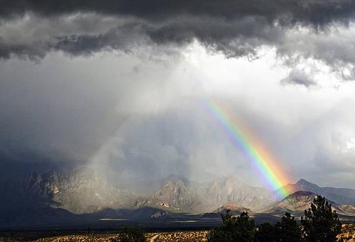 Kurt Van Wagner - Storm Over The Organ Mountains