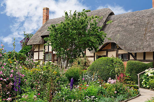 Jo Ann Snover - Summer cottage garden