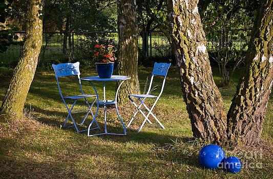 Summer Garden by David Davies
