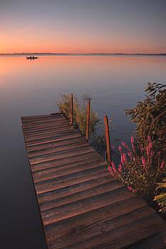 Summer morning by Davorin Mance