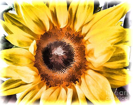 Sunflower by Mary Underwood