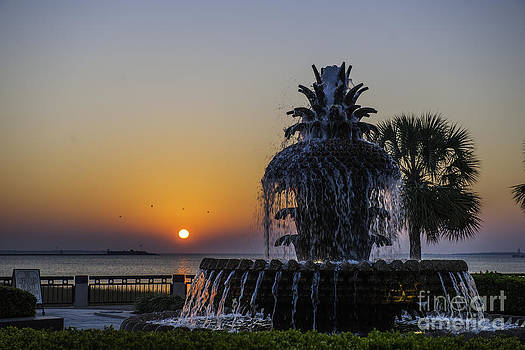Dale Powell - Sunrise at Waterfront Park