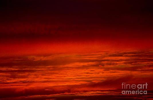 Darren Burroughs - Sunset