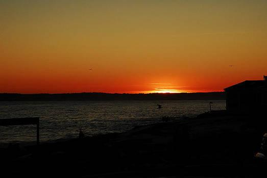 Sunset by Donna Desrosiers