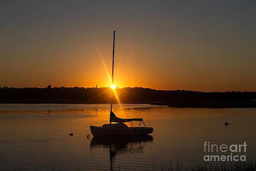 Sunset Silhouette by A New Focus Photography