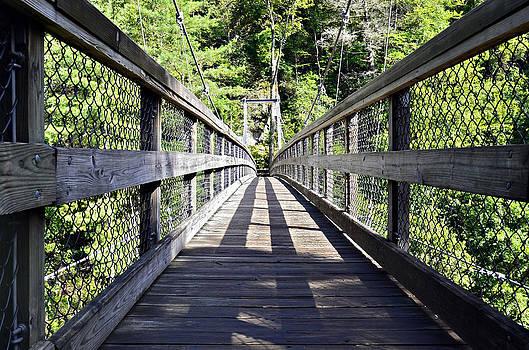 Suspension Bridge by Susan Leggett
