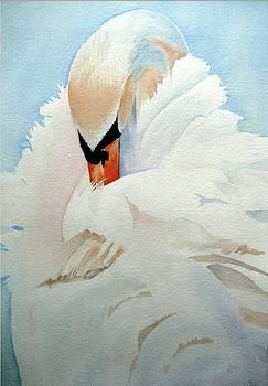 Swan by Stephanie Zobrist