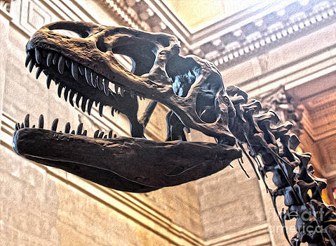 Gregory Dyer - T-Rex at the Museum of Natural History