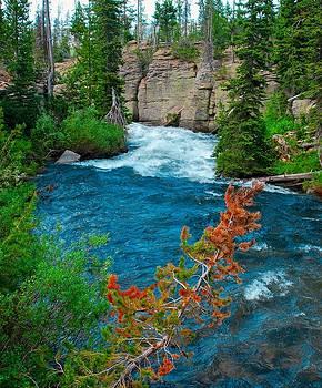 Teton Stream by Larry Bodinson