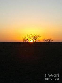 LNE KIRKES - TEXAS SUNSET
