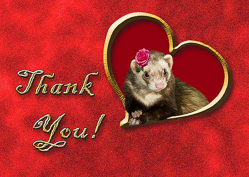 Jeanette K - Thank You Ferret