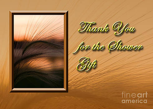 Jeanette K - Thank You for the Shower Gift Sunset