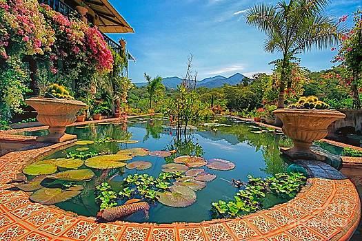 The Garden  by Nicola Fiscarelli