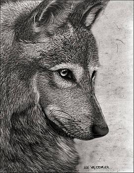 The Grey by Miki Krenelka