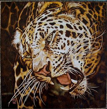 The Leopard's Hello by Cynthia Adams
