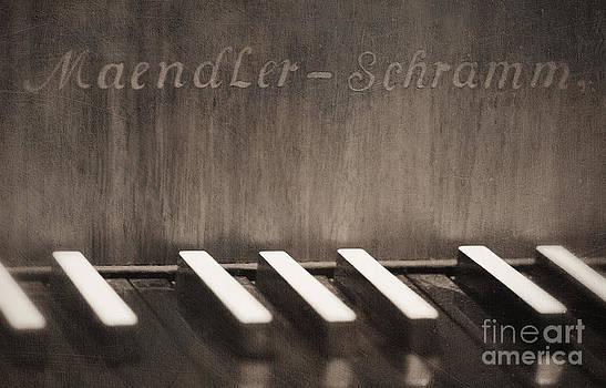 LHJB Photography - The piano keys