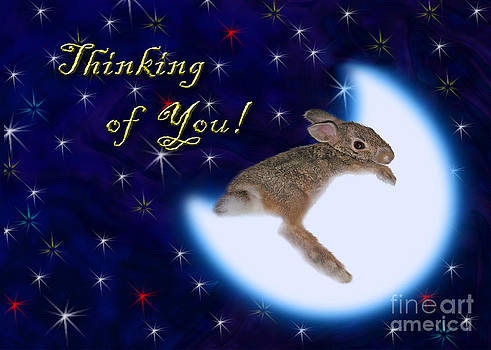 Jeanette K - Thinking of You Bunny Rabbit