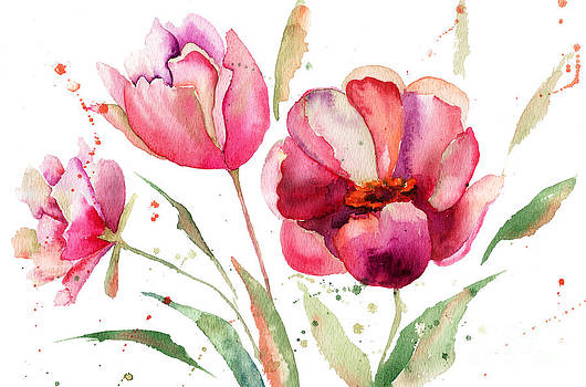 Three Tulips flowers  by Regina Jershova