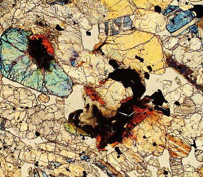 Mars Rocks by Hodges Jeffery
