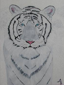 Tiger by Alex Banman