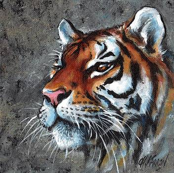 Tiger  by Christine Karron