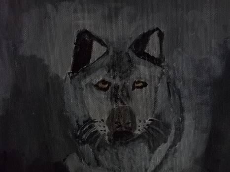 Timber Wolf Acrylic Painting by William Sahir House