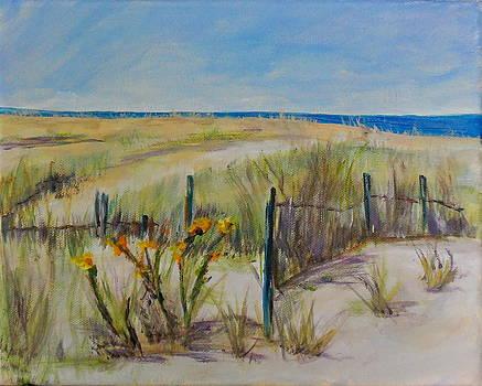 To The Beach by Maureen Pisano