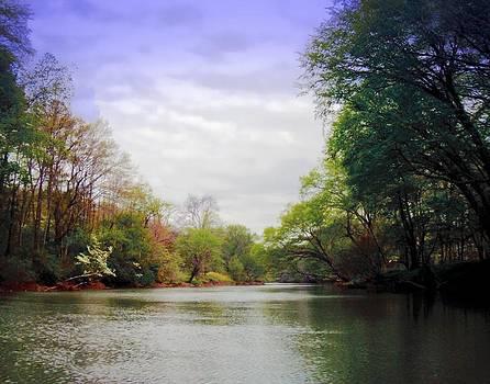 Joe Duket - Toccoa River Spring