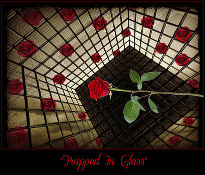 Trapped In Glass by Jessica Grandall
