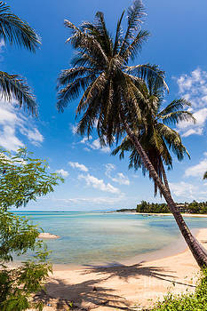 Tropical Beach Koh Samui Thailand by Fototrav Print