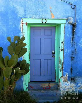 Tucson Blue Door by Jillian Audrey Photography