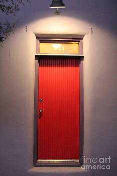 Tucson Doors  by Diane Greco-Lesser