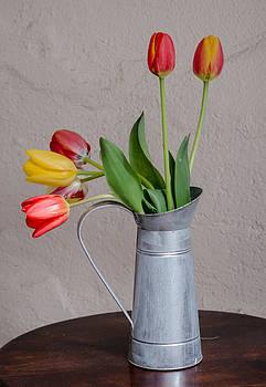 Tulip Still Life by Kelly McNamara