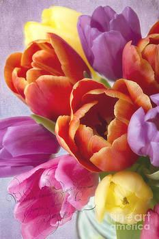 Tulips by Cindi Ressler