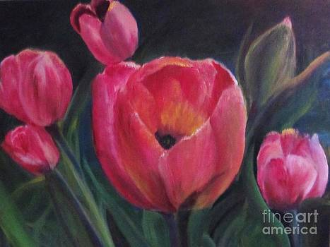 Tulips in Bloom by Trilby Cole