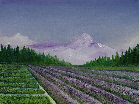 David Kacey - Tuscan Fields